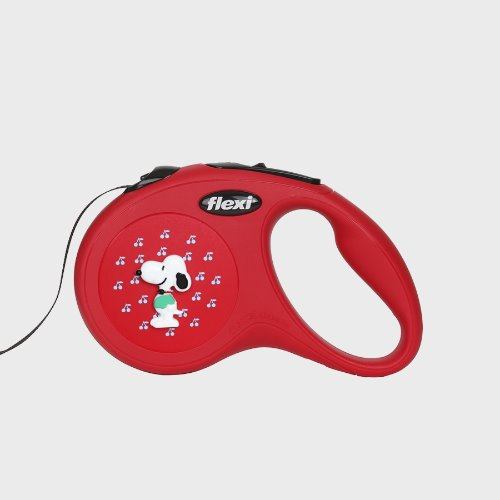 The Snoopy Leash